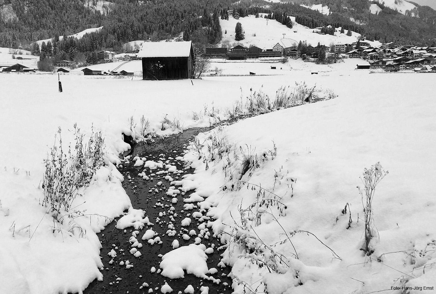 NEUSCHNEE In Lermoos kann Ende November in wenigen Stunden viel Schnee fallen. Die Wiesen, die dann am Morgen noch grün waren, sind am frühen Nachmittag schon in mehrere Zentimeter Schnee eingehüllt.