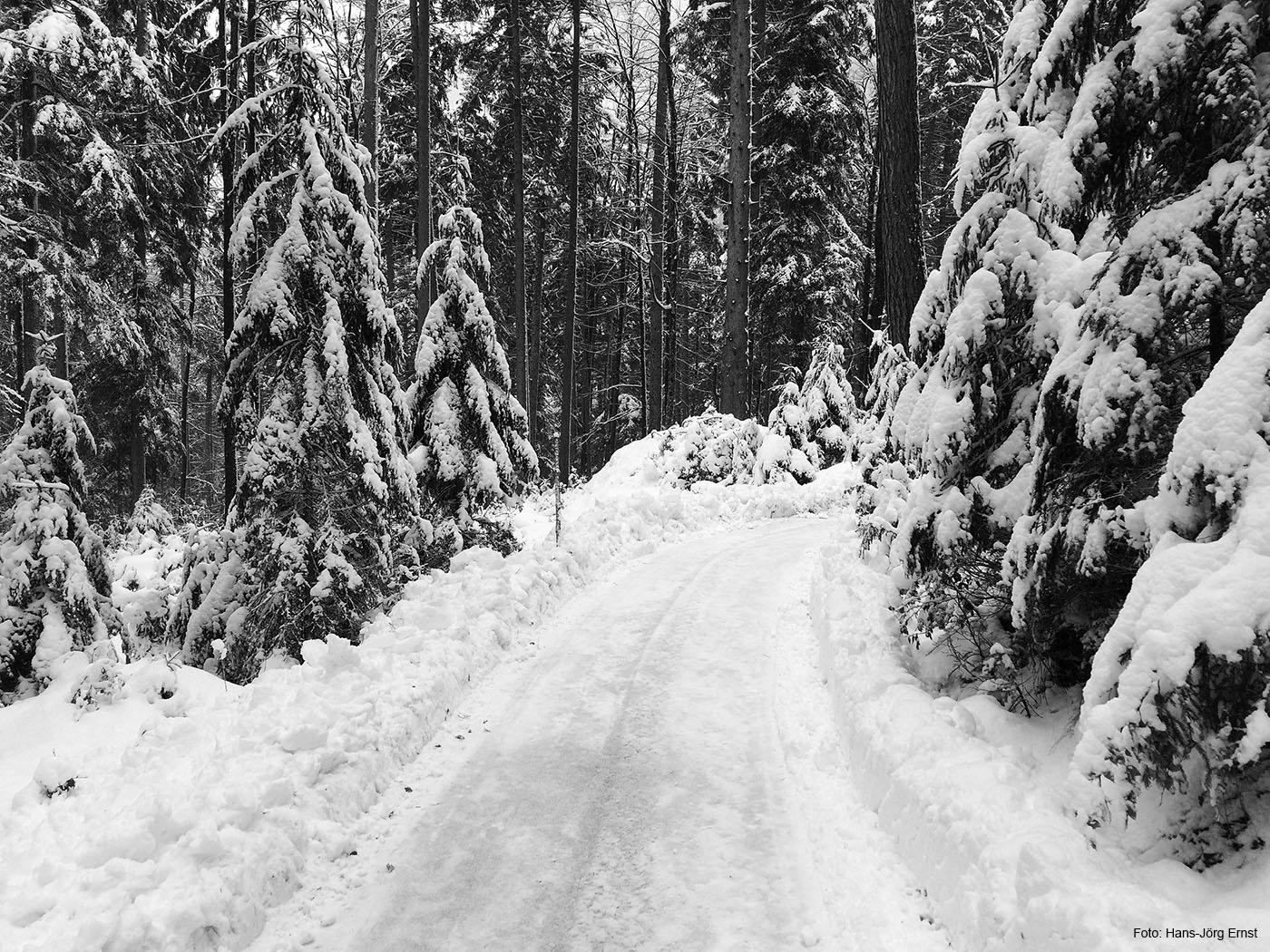 WALDWEG Der Rundweg um den Eibsee ist im Winter meistens gut geräumt oder gespurt. Gutes Schuhwerk ist auf den 7,5 Kilometern um den See (rund 2 Stunden) im Winter empfehlenswert.