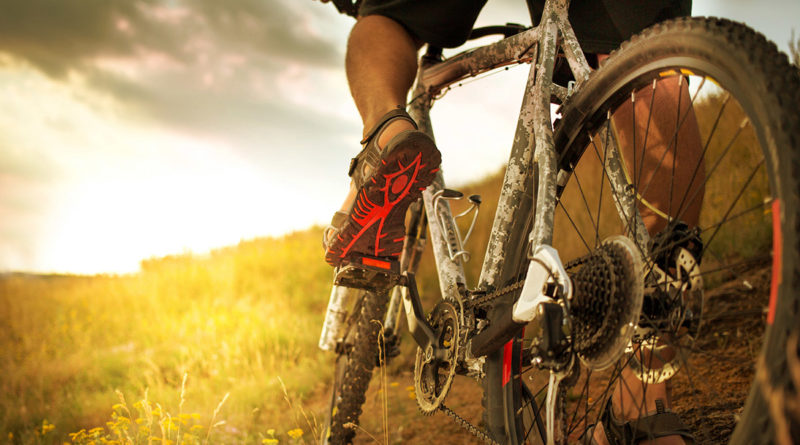 Mountainbike - Copyright Leart stock.adobe.com